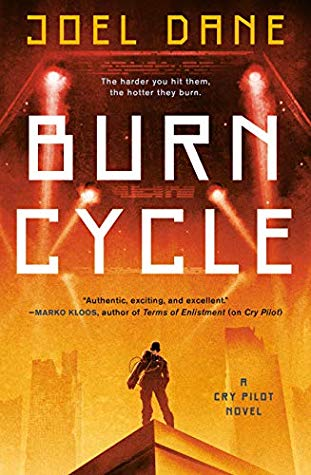 Burn Cycle by Joel Dane